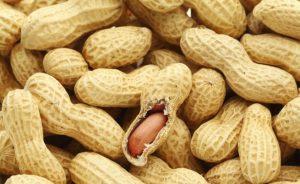 нискокалорични храни,които засищат