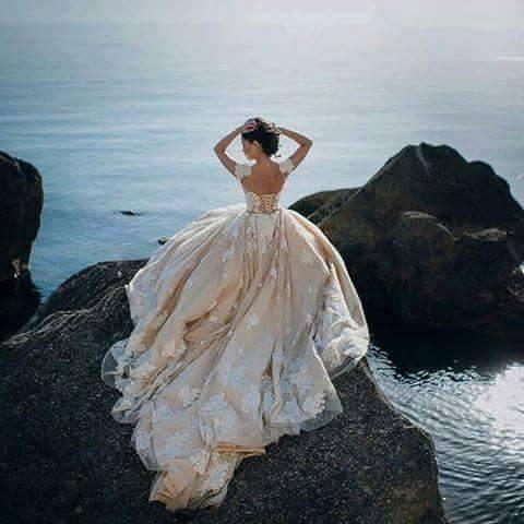 balnirokli.com-2017-красиви-булчински-рокли-36