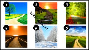 Тест Изберете Път и Научете Какво е Най-Важно в Живота ви