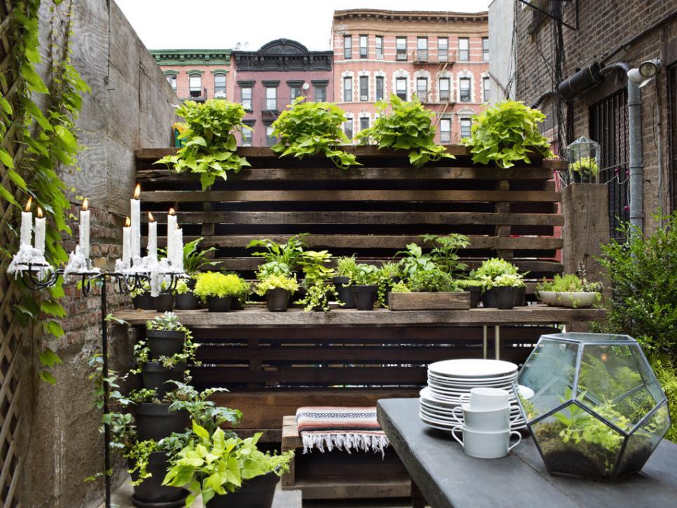 идея за красив двор и градина