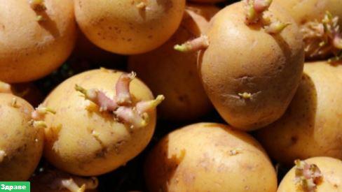 Как да Превърнем Кълновете от Картофи в Лекарство